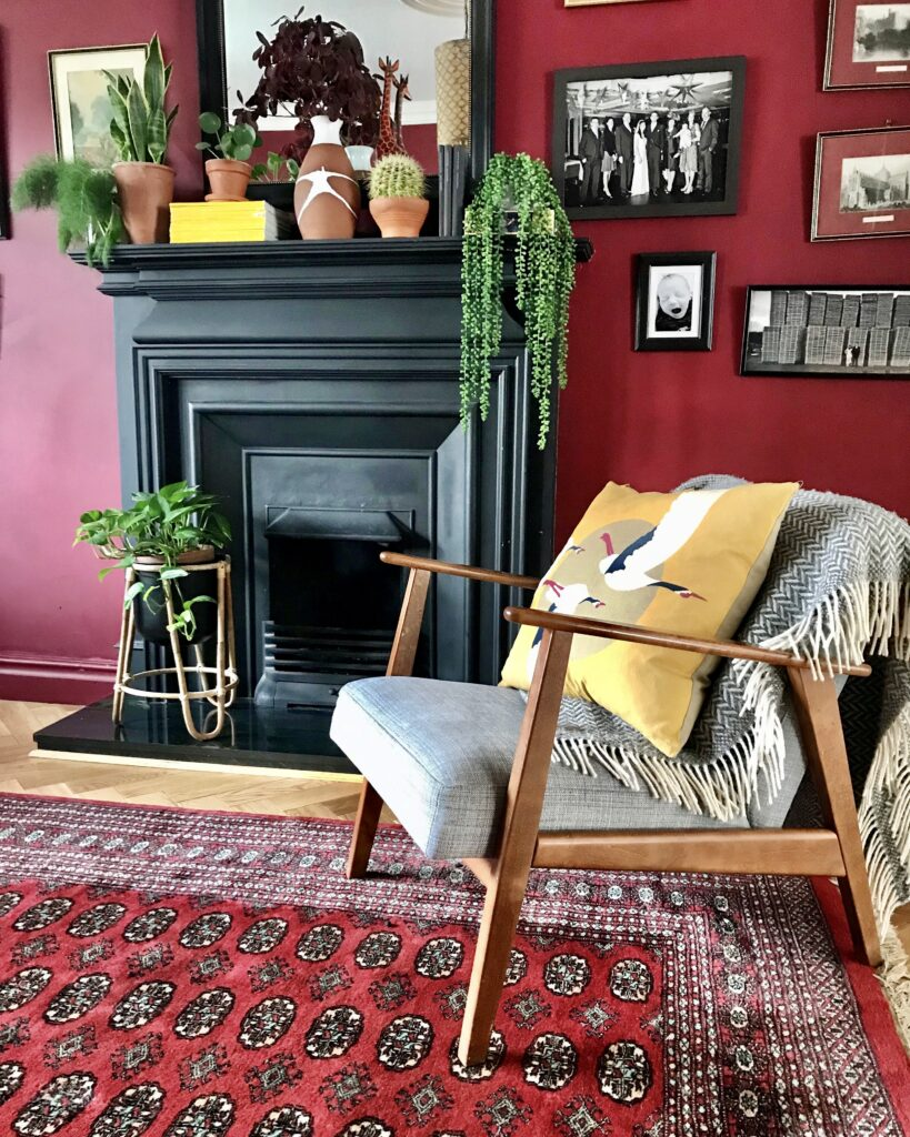 Black fireplace with house plants in a variety of pots