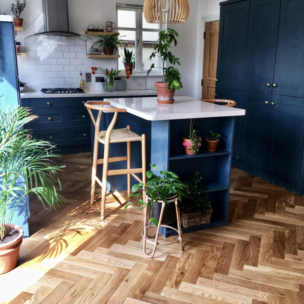 Navy kitchen with house plants