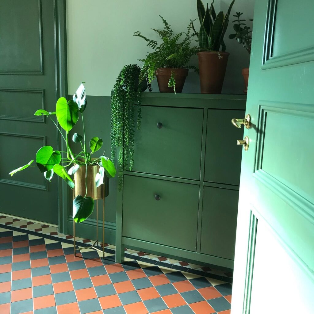 Green cupboard in green hallway